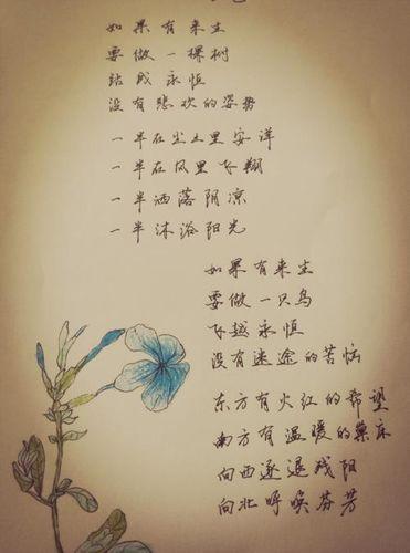 三毛著名诗句 三毛的比较经典的诗?
