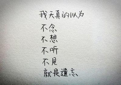 作家的爱情句子