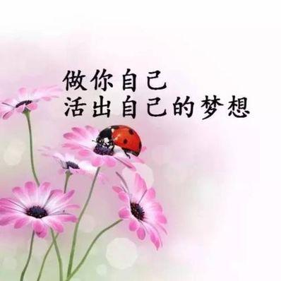 唯美简短正能量句子 唯美正能量短句子