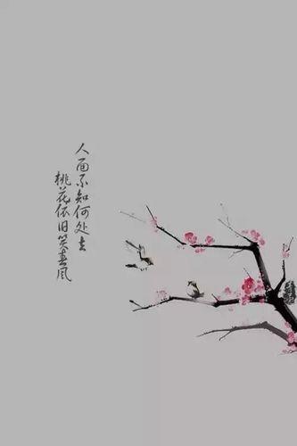 古风含蓄的情话 古风情话,要霸气,或者唯美。