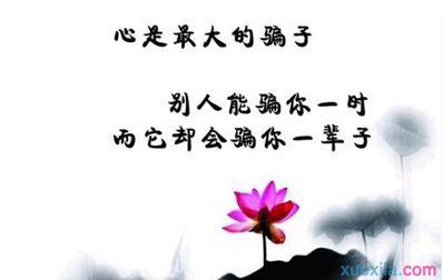 优美励志文艺句子 励志、唯美、伤感的句子