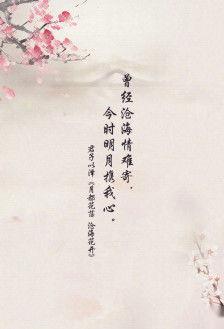 抒情唯美的句子摘抄 一百字以上抒情的摘抄(要求句子优美)