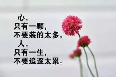 人生感悟精辟短句 感悟人生的经典句子