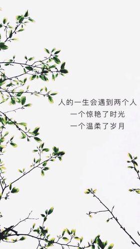 温柔优雅的经典句子 经典描写女人温柔的句子