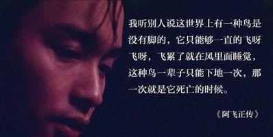 香港电影语录经典语录 求电影中的励志经典语录