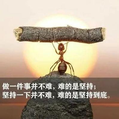 拼搏努力正能量的句子 正能量激励人的句子有哪些