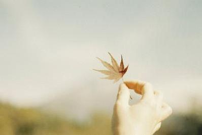 人生平淡经典感悟 形容人生平淡的词语