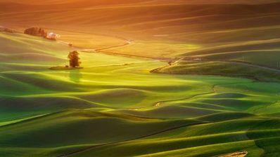 清晨一缕阳光的句子 描写清晨阳光的句子