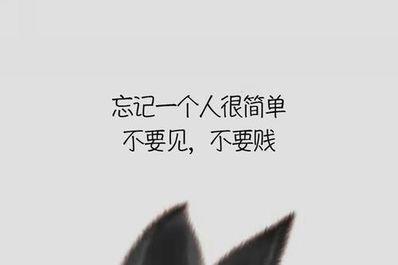 忘掉某个人的短句 忘一个人伤感的句子