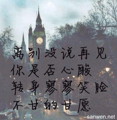 形容忍痛离开的句子 求 表达无奈,所以淡然离去的诗句...