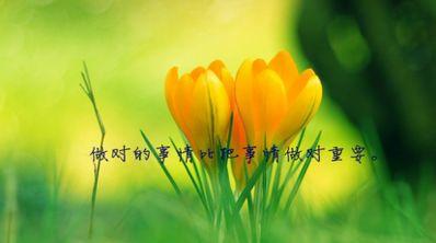唯美阳光简短英语句子 简短唯美的英语句子