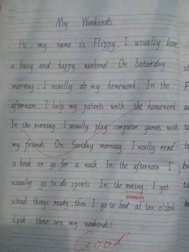 关于周末的英语作文十句话