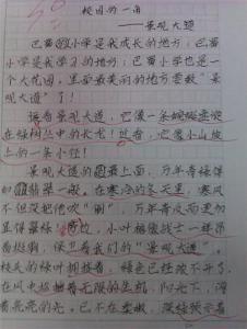 五年级英语作文5句话写景的 五年级英语作文5篇 (不少于五句话)