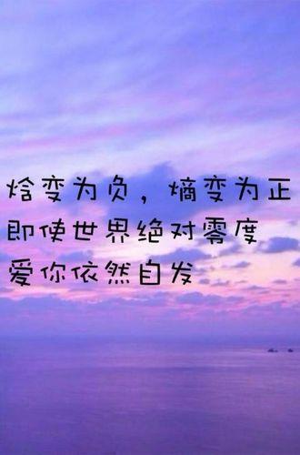 为爱情执着的句子