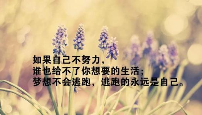 平静生活感悟句子 急需两句很有哲理的,关于平静生活的句子