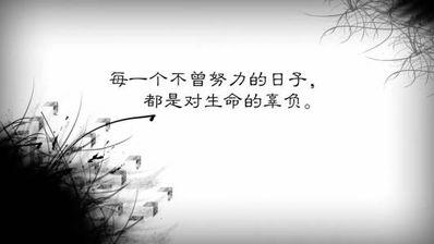 现实生活的句子 求关于现实与生活有关的句子