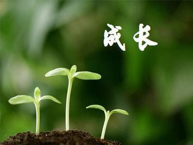 共同成长的优美句子 赞美成长的句子