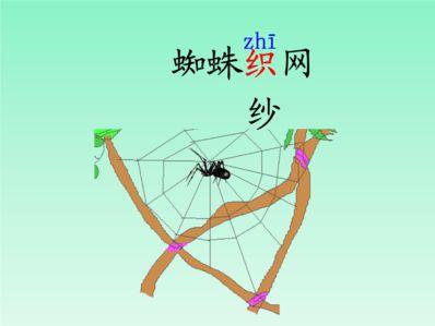关于蜘蛛织网的优美语句 关于蜘蛛织网的优美语句
