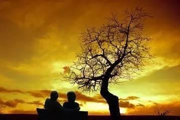 当我老了下句 当我老了,许时光微良,岁月静好。下一句