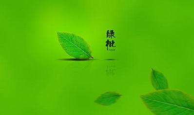 看着舒服的绿色句子 关于绿色的唯美句子有哪些?