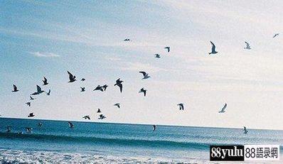 关于大海的伤感短句 描写大海的优美 、伤感的句子