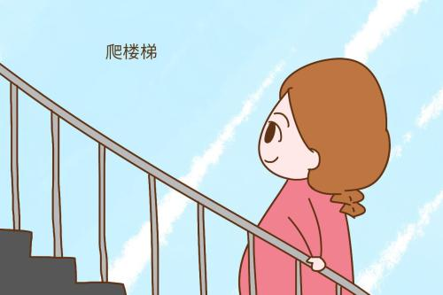 关于爬楼梯的人生感悟 关于楼梯感悟的文章