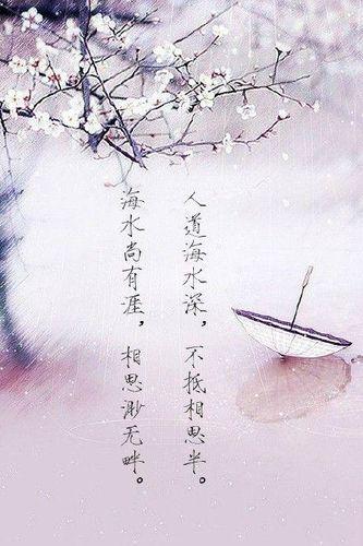 友谊的英文句子_致友情古风唯美的句子 古风唯美诗句(友情)-句子巴士