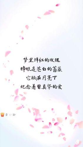 表示真诚的爱的句子 形容真诚的句子