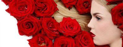 玫瑰花与女人经典语录
