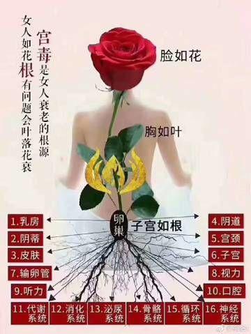女人如花的精短句子 描写女人与花的句子,要精辟要简短