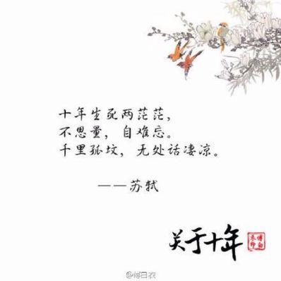 很美很温暖的古风句子 求唯美古风句子,一定要触动人心的