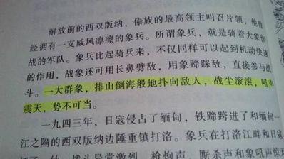 作家优美的句子摘抄中等