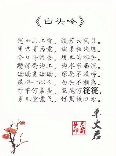 赞美才女的诗句和名言 古代形容美女的经典诗句,谢!