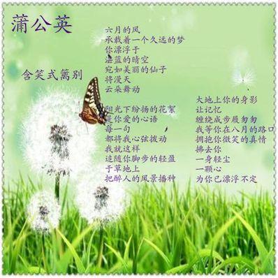 描写清凉风的句子 描写清凉的诗句