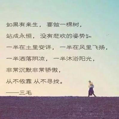 三毛诗与哲理句 三毛的比较经典的诗?