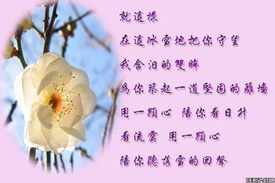 爱情之花的句子有哪些 有关花的爱情句子