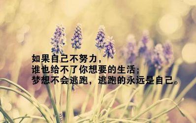 生活感悟唯美短句 关于生活的唯美句子