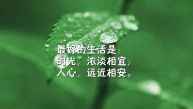 关于人生的励志句子唯美简短 关于人生励志的感悟句子