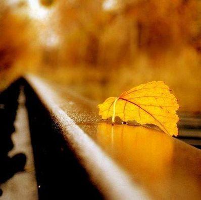 关于梦的有意境的句 有诗意,有意境,梦幻的句子?