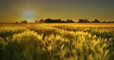 描写自然景观的好句 描写自然风光的好句子