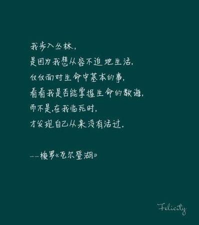 关于心句子 关于用心的句子