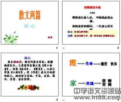 散文句子精选摘抄 林清玄散文精选摘抄30则