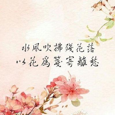 唯美古风的句子 求唯美古风句子,一定要触动人心的