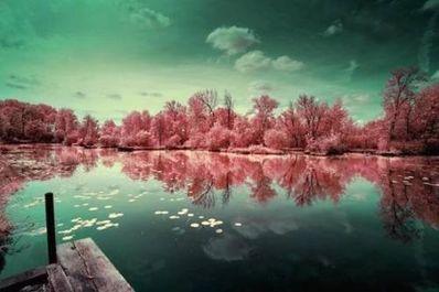 梦境唯美句子 关于梦境的句子