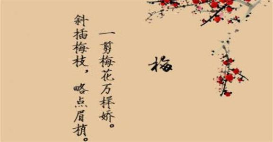 古风清新句子 求古风的句子文艺小清新之类的句子
