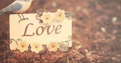一句诗打动人心爱情 爱情诗句经典感人