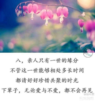 人生感悟珍惜亲情友情 珍惜亲情友情的句子