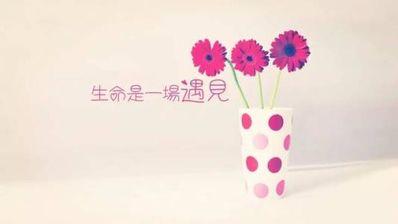 关于花的哲理句子唯美 关于花的优美哲理句子有哪些?