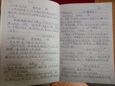 3年级好句子摘抄 三年级好词好句摘抄大全