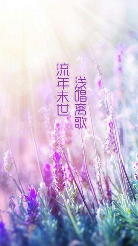 关于离殇的唯美句子 求带有唯美与离殇两个词的句子